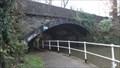 Image for Worsley Bridge Over The Bridgewater Canal - Worsley, UK