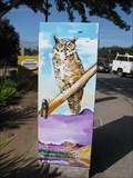 Image for Animals - Santa Cruz, CA