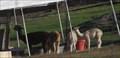 Image for 101 Alpaca Ranch - Prunedale, CA