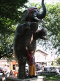 Image for Romeo, the Rogue Elephant