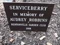 Image for Audrey Robbins - Compton Gardens - Bentonville AR
