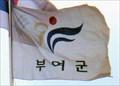 Image for Phoenix Flag  -  Buyeo, Korea