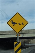 Image for Duck Crossing, Taylorsville, UT