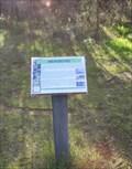 Image for Warringine Park, Hastings, Victoria, Australia - Mangroves