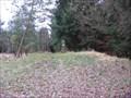 Image for Federlesmahd Hallstatt Burial Mound
