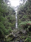 Image for Erskine Falls- Great Otway National Park, Angahook section - Victoria, Australia