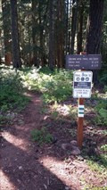Image for Brown Mountain Trail No. 1005 - Jackson County, OR