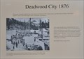 Image for Deadwood City 1876