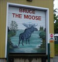 Image for Bruce the Moose-New Brunswick-Canada