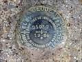 "Image for BM0184 - ""D 1030"" bench mark disk - Austin County, TX"