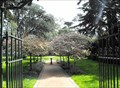 Image for Garden of Shakespeare's Flowers - San Francisco, California