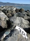 Image for Pillar Point Breakwater (West): 29+