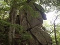 Image for Balancing Rock, Dewerstone Woods