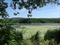 Image for LAMOKA LAKE - Schuyler County, NY