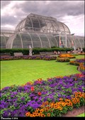 Image for Palm House - Royal Botanic Gardens, Kew (London, UK)