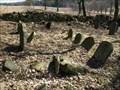 Image for židovský hrbitov / the Jewish cemetery, Pavlov, Czech republic