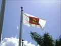 Image for Wellington flag,FL