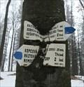 Image for Together since 1965 - hiking trail Matusova, Slovakia