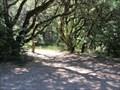Image for El Corte de Madera Creek Open Space Preserve - Woodside, CA