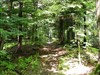 Blue blazes mark the trail in Pennsylvania.