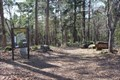 Image for Whispering Pines Nature Trail -- Tyler State Park, Tyler TX