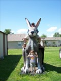 Image for Jackrabbit at Henry's Ra66it Ranch - Staunton, IL