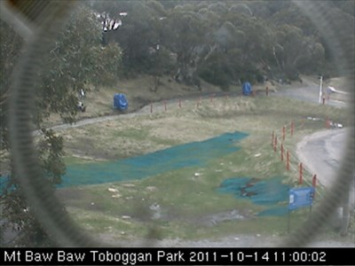 Mt Baw Baw Tobogan run in Green Season