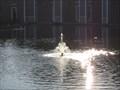 Image for Pleasant Hill City Hall Lagoon Fountain - Pleasant Hill, CA