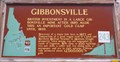 Image for #243 - Gibbonsville