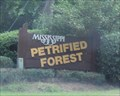 Image for Earth Science Museum -- Petrified Forest of Mississippi, nr Flora MS