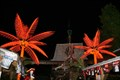 Image for Biehl's Slip Knot Lounge - Punta Gorda, FL