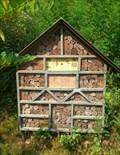 Image for Insektenhotel im Froschparadies in Nalbach, Saarland, Germany