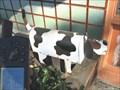 Image for Pet Hospital Dog Box