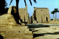 Image for Temple at Luxor, Egypt