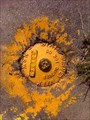 Image for State Surveymark 73955, Kiama Downs, NSW