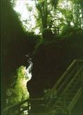 Image for  Mangapohue Natural Arch. Waikato. New Zealand.
