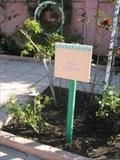 Image for Dr Judy Yates Rose Garden - Florida Botanical Gardens