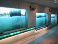 Image for Passage 309 Fish Ladder - Gambsheim/France