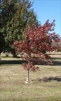 Image for P.F.C. Bernard M. Lester, Jr. - Memorial Park Cemetery, OKC