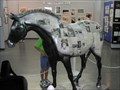 Image for Cosmic Newspaper Horse
