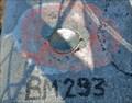 Image for BM 293