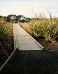 Image for Southern Light boardwalk