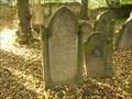 Image for židovský hrbitov / the Jewish cemetery, Praha - Uhríneves,  Czech republic
