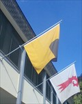 Image for Municipal Flag - Therwil, BL, Switzerland