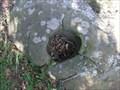 Image for Hayward Hills Bedrock Mortars @ Jalquin Vista