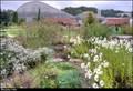 Image for Botanická zahrada Teplice / Teplice Botanical Garden (North Bohemia)