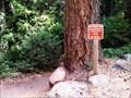 Image for Hedge Creek Falls Trail - Dunsmuir, CA