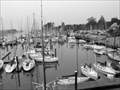 Image for Ansel Adams Photo Hunt: Santa Cruz Harbor