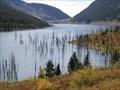 Image for Earthquake Lake Overlook - Montana