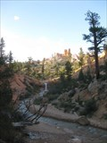 Image for Tropic Ditch - Bryce Canyon